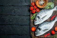 Rohes Seefisch dorado mit Tomaten, Kräutern und Gewürzen stockfotos