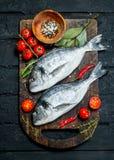 Rohes Seefisch dorado mit Tomaten, Kräutern und Gewürzen lizenzfreie stockfotografie