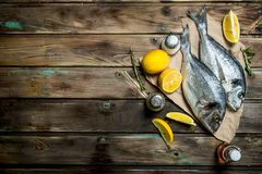 Rohes Seefisch dorado mit Zitrone, Kräutern und aromatischen Gewürzen stockfoto