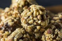 Rohes selbst gemachtes gesundes Gluten-freie Datums-Bisse Lizenzfreie Stockfotografie