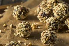 Rohes selbst gemachtes gesundes Gluten-freie Datums-Bisse Stockfotos
