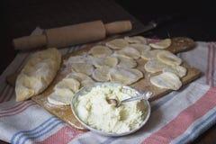 Rohes ukrainisches traditionelles vareniki mit Hüttenkäse lizenzfreie stockfotos