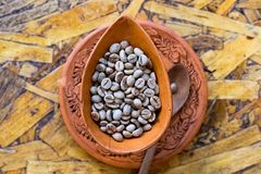 Rohkaffeebohnen im Lehm handgemacht Lizenzfreie Stockfotos