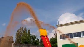 Rohr der Arbeitskornreinigerwerfer-Ladermaschine stock footage