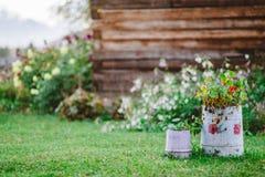 Rohre mit Blumen im Hof eines Dorfhauses im Regen stockfoto