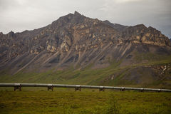 Rohrleitung in Alaska Stockfotos