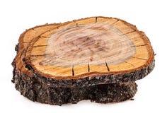 Rohschnitt des Obstbaumes Stockbilder