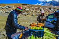 Rohtang Pass, Manali, India April 2018 - A seller sells baked co. Rn to tourists at Rohtang pass. This a famous tourist attraction of Manali tourism, India stock image