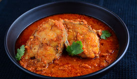 Rohu fish curry Royalty Free Stock Images