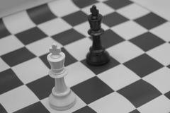 Roi blanc et noir contestant pour la victoire Photo libre de droits