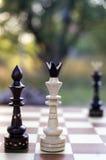 Roi blanc et pièces d'échecs noires de reine Image stock