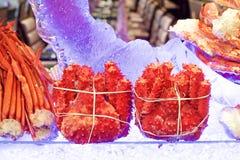 roi d'Alaska de crabe photo libre de droits