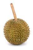Roi de durian de fruit Photo libre de droits