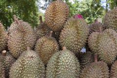Roi de durian de fruit Image libre de droits