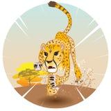 Roi de guépard de vitesse illustration stock