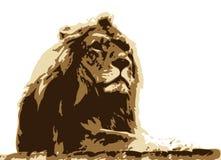 Roi de la jungle Image stock