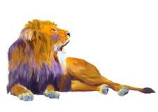 Roi de lion Photo libre de droits