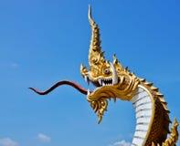 Roi de Naga images libres de droits