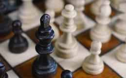 Roi noir image libre de droits
