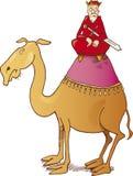 Roi sur le chameau illustration de vecteur