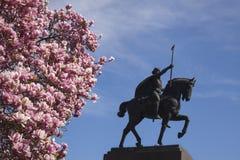 Roi sur le cheval Image libre de droits