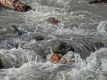 Roiling Nebenfluss stockbild
