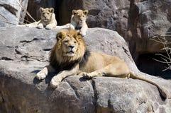 rois trois Photos libres de droits