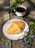 Сroissants on old wooden table. Croissants and tea on old wooden table Royalty Free Stock Photos