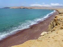 Roja strand i Paracas den nationella reserven, Peru royaltyfri fotografi