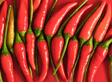 Rojo, caliente y brillante Imagenes de archivo