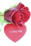 Rojo color de rosa y corazón foto de archivo