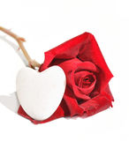 Rojo color de rosa y corazón Fotos de archivo libres de regalías