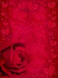 Rojo color de rosa y corazones Imagen de archivo libre de regalías