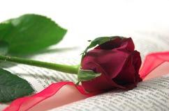 Rojo color de rosa y libro Imagen de archivo