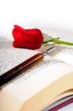 Rojo color de rosa y pluma Fotografía de archivo libre de regalías