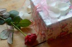 Rojo color de rosa y regalo Imagen de archivo