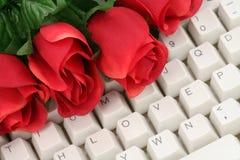 Rojo color de rosa y teclado Fotografía de archivo