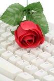 Rojo color de rosa y teclado Fotografía de archivo libre de regalías