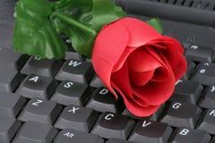 Rojo color de rosa y teclado Foto de archivo