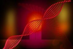 Rojo de la DNA Imagenes de archivo