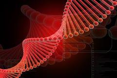 Rojo de la DNA Fotos de archivo