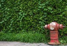 Rojo de la manguera del abastecimiento de agua de la lucha contra el fuego Fotos de archivo