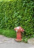 Rojo de la manguera del abastecimiento de agua de la lucha contra el fuego Foto de archivo libre de regalías