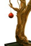 Rojo de madera del plantador de la Navidad de la corteza vieja del árbol Foto de archivo libre de regalías