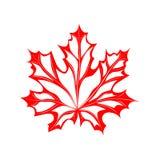 Rojo del arce de la hoja Foto de archivo libre de regalías