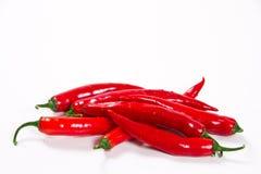 Rojo del chile Fotografía de archivo