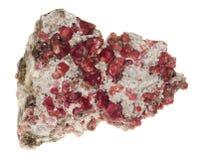Rojo del granate Fotografía de archivo