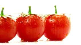 Rojo del tomate en un fondo blanco almacen de metraje de vídeo