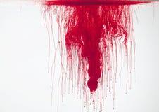 Rojo en agua Imagen de archivo libre de regalías
