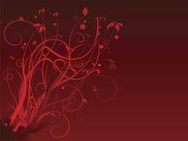 Rojo floral Foto de archivo libre de regalías